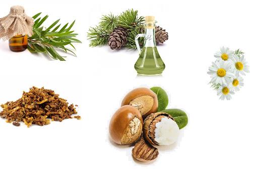 Exodermin - Composición (propiedades y efectos de los ingredientes)